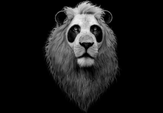 Pandalion-Design-by-Humans-Adam-Lawless-art