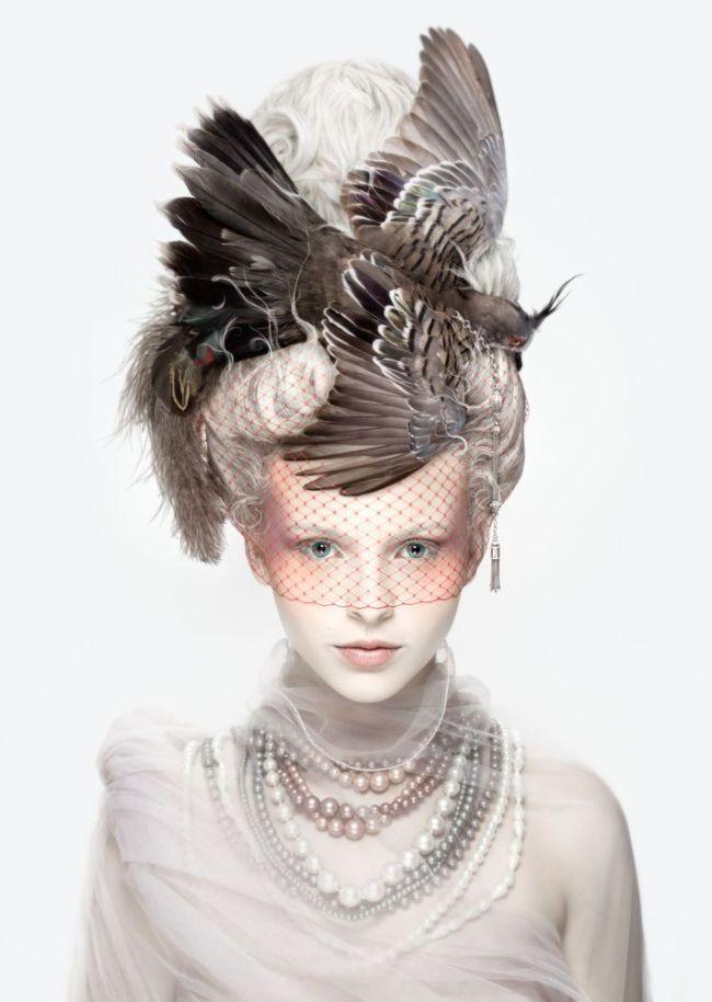 bird-fascinator-www.alexiasinclair.com