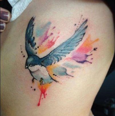 blue-wren-bird-2