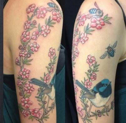 blue-wren-bird-3