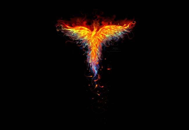 Fire-Phoenix-graffic-1