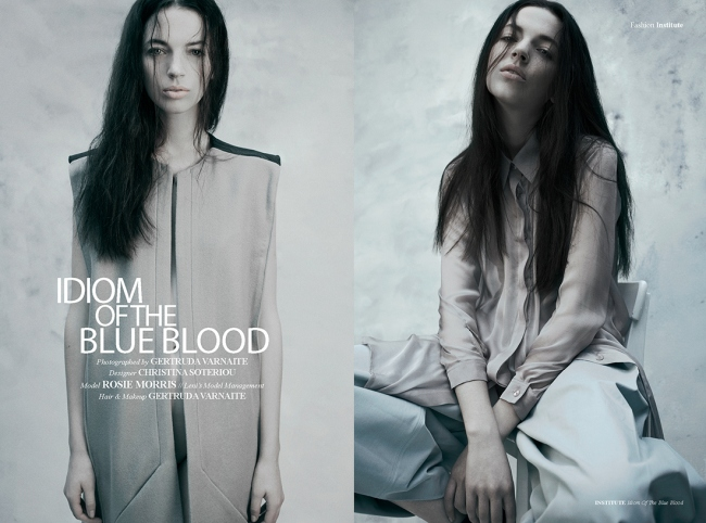 idiom-of-the-blue-blood1